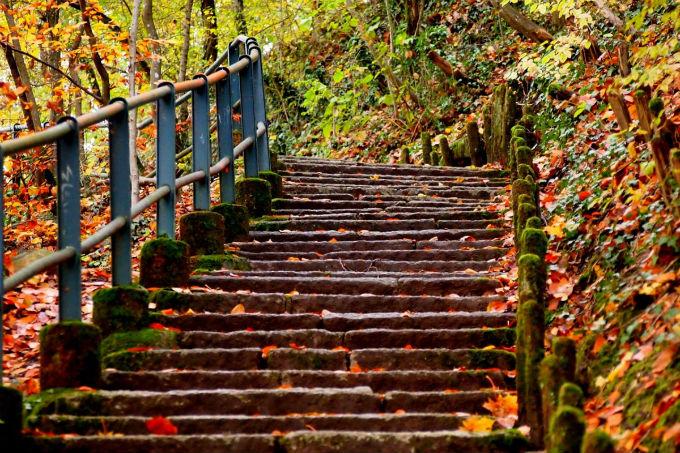 Life's Pathway